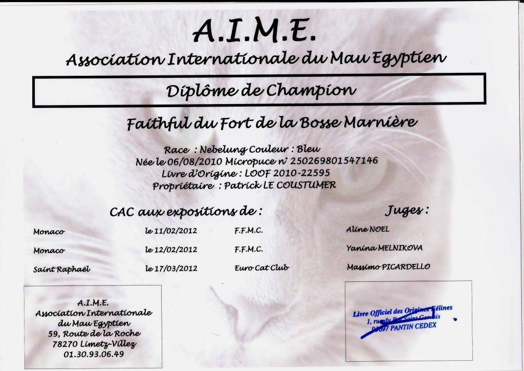 ch-CH. Faithful du fort de la bosse marniere (of Amiel-Goshen)