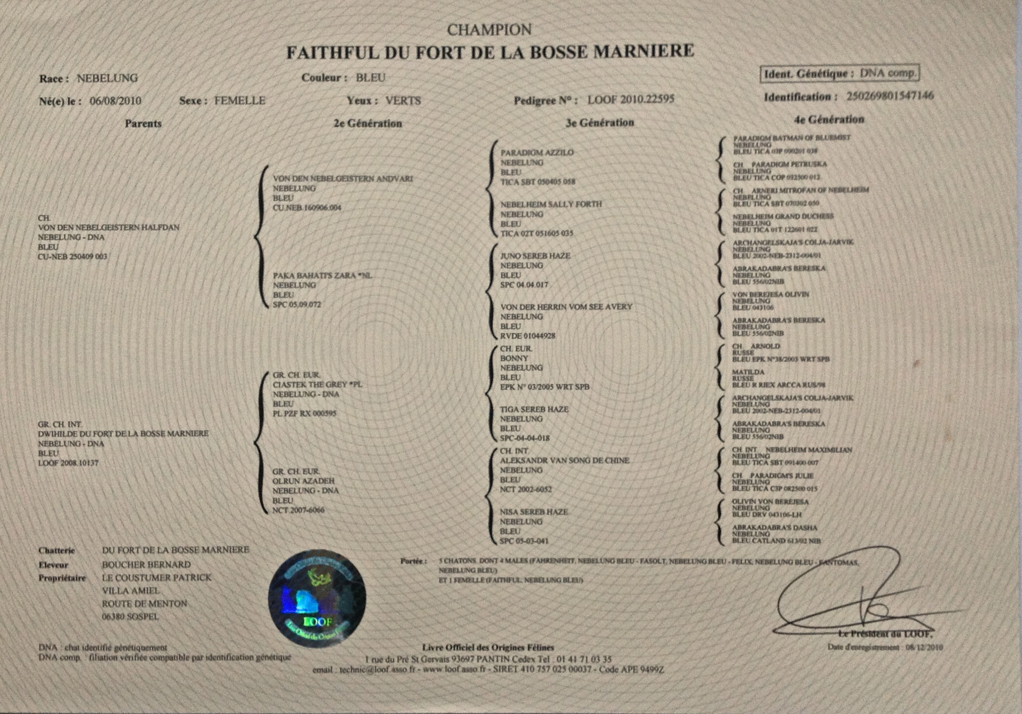 Faithful du Fort De La Bosse Marniere (of Amiel-Goshen) Pedigree LOOF