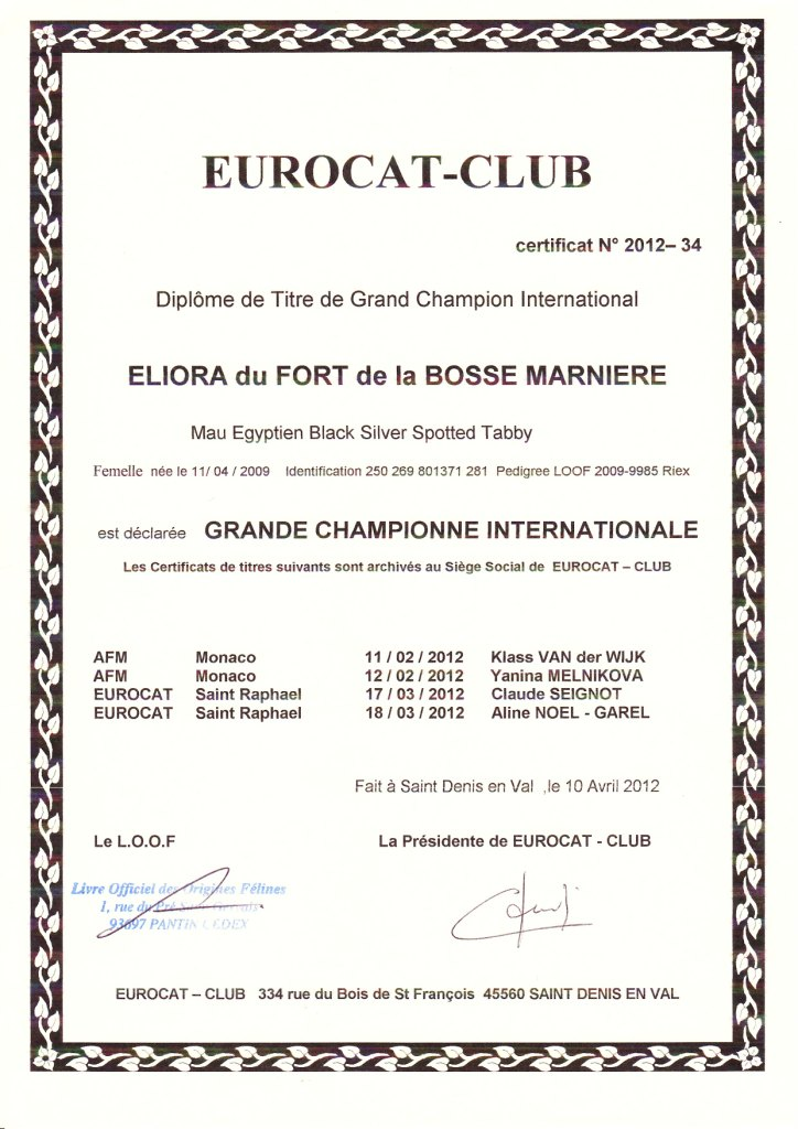 Grand International Champion Title of Eli-Ora du Fort de la Bosse Marnier