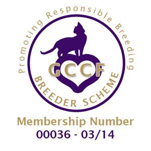 GCCF breeder Scheme 2014