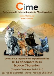 CIME espace Charenton Egyptian Mau Special 2014