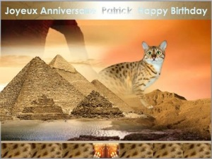 birthday card 11061280_1595874540698239_523824614304709069_n